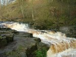 Stainforth Foss - 2. Click for bigger picture.